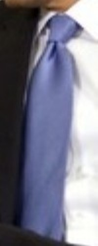 Neck of State: The return of Barack Obama's favorite tie, Big Blue, to the Oval office.  February 2, 2009.
